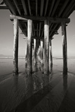 Pier Pilings 16 Photographic Print by Lee Peterson