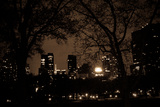 Central Park at Night I Photographic Print by Erin Berzel