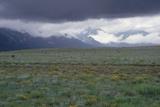 Santa Fe Trail Ruts on the Cimarron Cutoff Route, New Mexico Photographic Print