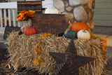 Autumn Harvest IV Photographic Print by Philip Clayton-thompson