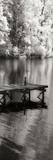 Mint Springs Lake Panel I Photographic Print by Alan Hausenflock