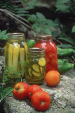 Traditional Home-Preserved Pickles and Tomatoes Photographic Print