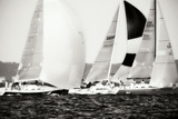 Race on the Chesapeake II Photographic Print by Alan Hausenflock