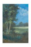 Azure Sky I Premium Giclee Print by Linda Wacaster