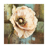 Papaver II Poppy Flower Giclee Print by Selina Werbelow