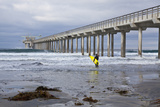 Scripps Pier I Photographic Print by Lee Peterson