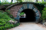 Bridge in Central Park Photographic Print by Erin Berzel