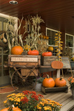 Autumn Harvest I Photographic Print by Philip Clayton-thompson