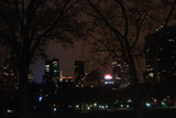 Central Park at Night II Photographic Print by Erin Berzel