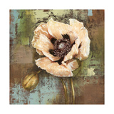 Papaver I Poppy Flower Giclee Print by Selina Werbelow
