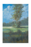 Azure Sky II Premium Giclee Print by Linda Wacaster