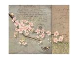 Cherry Blossoms Giclee Print by Lynnea Washburn