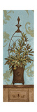 Blue Olive Topiary II Posters by Pamela Gladding