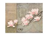 Magnolias Giclee Print by Lynnea Washburn
