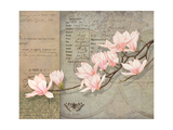 Magnolias Premium Giclee Print by Lynnea Washburn