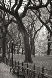 Central Park Dancers II Photographic Print by Vitaly Geyman