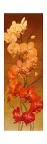 Golden Orchids II Premium Giclee Print by Kenneth Catlett