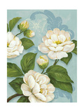 Camellias Giclee Print by Pamela Gladding