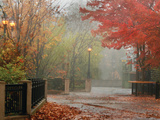 Fall Plaza I Photographic Print by Vitaly Geyman