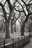 Central Park Dancers I Photographic Print by Vitaly Geyman