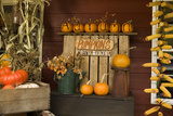 Autumn Harvest III Photographic Print by Philip Clayton-thompson
