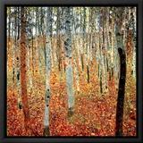Skog med bokträd, ca 1903 Inramat kanvastryck av Gustav Klimt