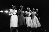 Pointer Sisters Photographic Print by Norman L. Hunter