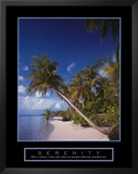 Serenity: Palm Trees Posters