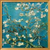 Kukkivat mantelioksat, San Remy, n. 1890 Juliste tekijänä Vincent van Gogh