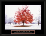 Endurance: Fall Tree Prints by Craig Tuttle