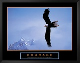 Courage: Bald Eagle Prints