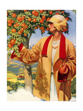 1920s USA Picking Oranges Magazine Plate Giclee Print