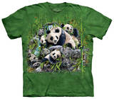 Find 13 Pandas T-shirts