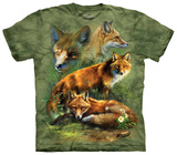 Red Fox Collage Shirts