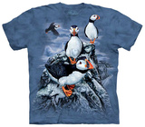 Find 10 Puffins T-shirts
