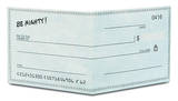 Checkbook Tyvek Mighty Wallet Wallet