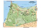 Michelin Official The Presidio Golden Gate Bridge Map Art Print Poster Prints