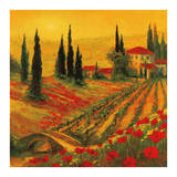 Poppies of Toscano I Affiches par Art Fronckowiak