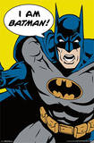 Batman - I Am Batman Pop Art Comics Poster Prints