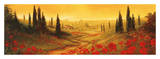 Toscano Panel II Prints by Art Fronckowiak