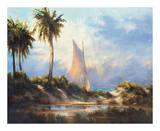 Manasota Key Returning Prints by  Malarz