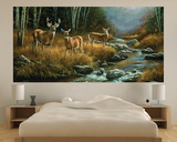 Whitetail Deer (Indoor/Outdoor) Vinyl Wall Mural Wall Mural