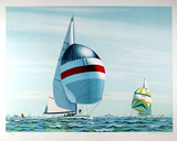 America's Cup Collectable Print by David Lockhart