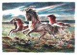 Mustang Collectable Print by Lumen Martin Winter