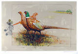Pheasants Limited Edition by Allan Mardon