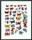 Sommerfugle, Butterflies, 1955 Posters af Andy Warhol