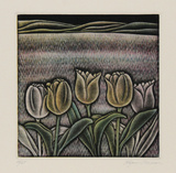 Tulips Limited Edition by Shigenu Narikawa