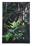 Yellow Ferns Limited Edition by Jon Carsman