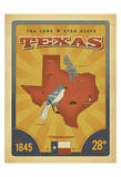 Texas: The Lone Star State Print by  Anderson Design Group