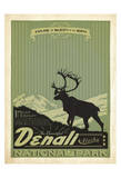 Denali National Park II Art by  Anderson Design Group
